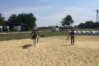 Futószáras lovas oktatás