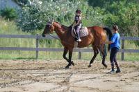 Futószáras lovaglás